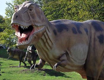 Зоолог Брайан Форд из Кембриджского университета считает, что большую часть времени динозавры проводили в воде.Фото: Sergei Supinsky/AFP/Getty Images