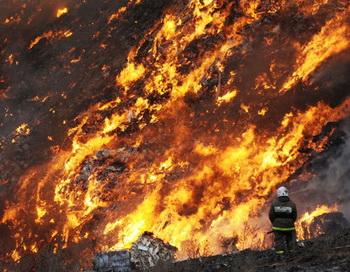 Пожар на свалке мусора на Волхонском шоссе в Ленинградской области. Фото РИА Новости