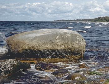 Ладожское озеро. Фото РИА Новости