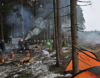 Гражданские активисты-экологи, протестующие против вырубки Цаговского леса для строительства новой трассы, в палаточном лагере на месте проведения работ. Фото РИА Новости