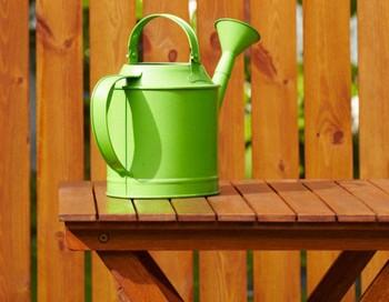 Как прожить на дачном участке. Фото с сайта  www.asienda.ru