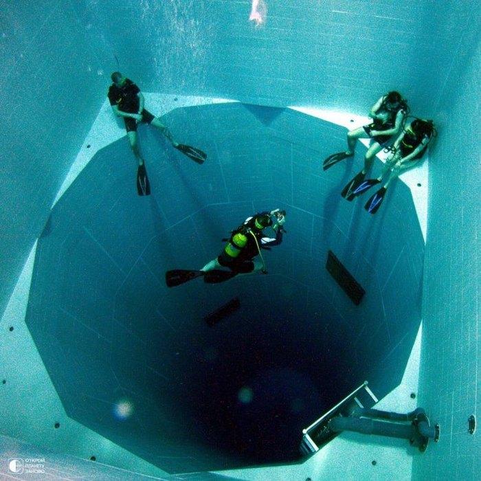 Подводный мир своими руками фото