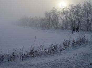 Я предложил сократить путь и пройти через сельский сад. Фото: Ирина Рудская/Великая Эпоха (The Epoch Times)