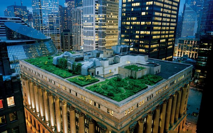 Здание мэрии в Чикаго. Фото с сайта livejournal.com
