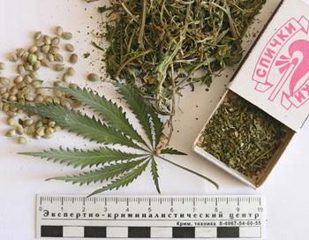 Наркотики. Фото РИА Новости