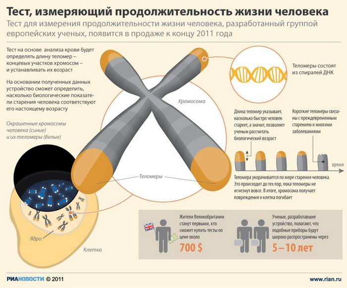 Тест, измеряющий продолжительность жизни человека