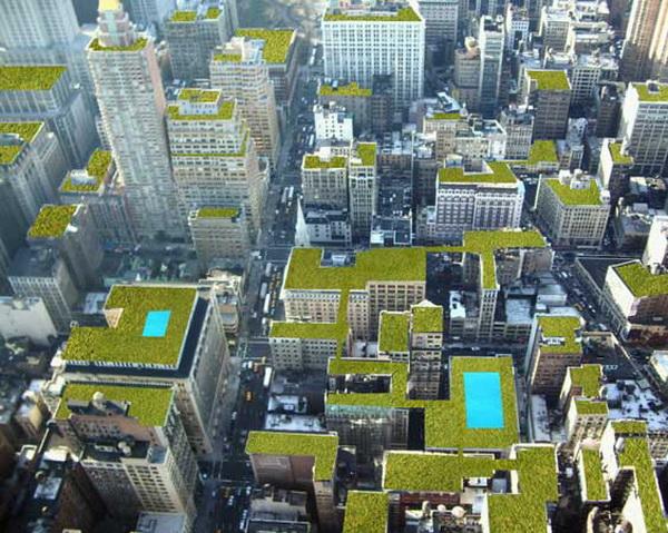 Сады на крышах. Фото с сайта diycentre.com.ua