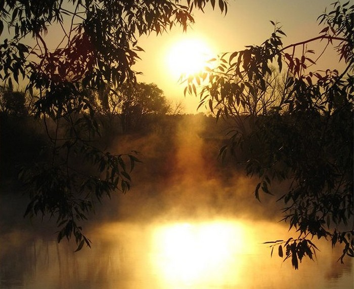 В парке-отеле Яхонты на берегу реки Протвы. Фото с сайта tarusa.yahonty.ru