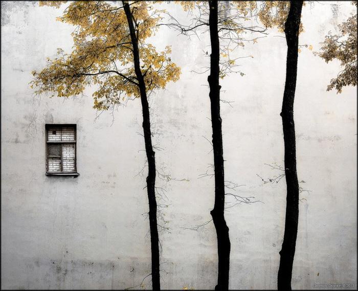 Фото: Игорь Громов-Дранкин