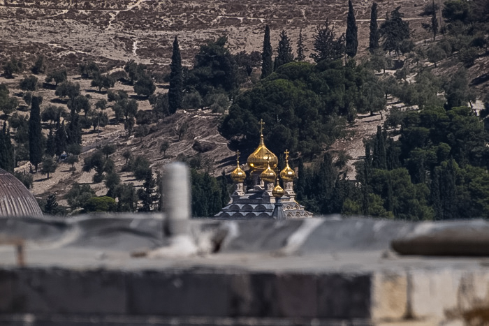 По крышам Старого города. Виднеются золотые купола Собора Марии Магдалины. Фото: Хава Тор/Великая Эпоха (The Epoch Times)