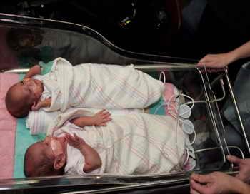 За прошлый год в Москве родились около двух тысяч двойняшек. Фото: Scott Olson/Getty Images