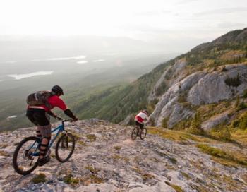 Жители Швейцарии очень правильно питаются и передвигаются на велосипедах. Фото: Darryl Leniuk/Getty Images