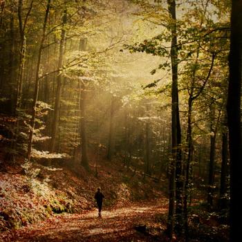 Найдите в себе силы начать с легких аэробных упражнений, например, с ходьбы по парку, и постепенно переходите к более интенсивным. Фото: Dirk Wьstenhagen Imagery/Getty Images