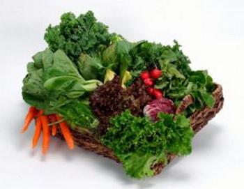 Под зеленью обычно подразумевают зеленую листовую капусту, листья горчицы, зеленую репу, капусту китайскую, обычную капусту и салат. Фото: Photos.com