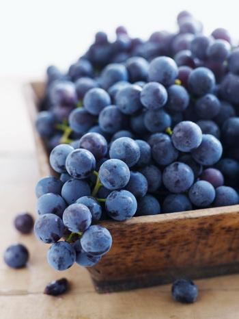 Экстракт виноградных косточек эффективен в деле лечения плоскоклеточного рака головы и шеи. Фото: Alexandra Grablewski/Getty Images