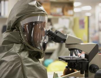 Найден ген, дающий кишечным бактериям высокий уровень устойчивости к лекарствам. Фото: ERproductions Ltd/Getty Images