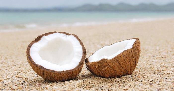 Кокос - это не просто «райский плод», но и целый набор естественных медикаментов. Фото: asiasociety.org