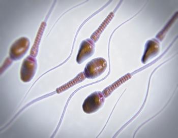 Новые исследования ученых доказывают полезность «умных» жиров и их благотворное влияние на репродуктивную функцию у мужчин. Фото: Science Picture Co/Getty Images