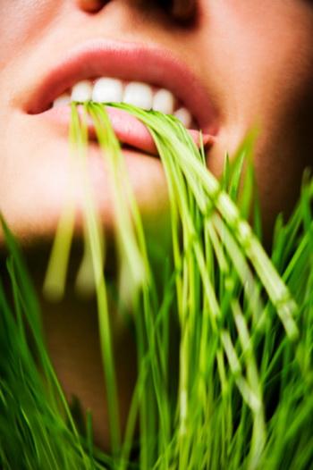 Согласно статистическим данным вегетарианский образ жизни помогает человеку продлить жизнь. Фото: Scott Kleinman/Getty Images