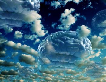 Ученые опровергают предположение о том, что галлюциногенные грибы могут активировать какие-то области мозга. Фото: Agliolo Mike/Getty Images