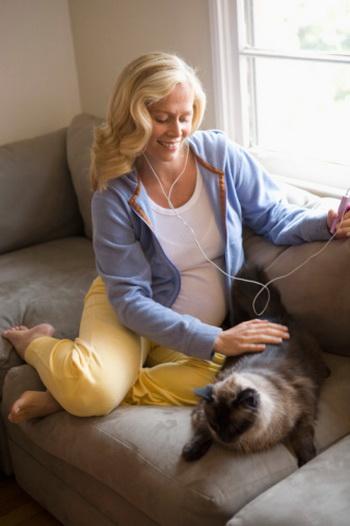 По мнению медиков, заражение женщины токсоплазмозом во время беременности или незадолго до неё может привести к выкидышу или преждевременной гибели плода. Фото: Reggie Casagrande/Getty Images