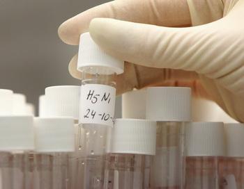 Пробирки с содержанием вируса гриппа. Фото: LEX VAN LIESHOUT/AFP/Getty Images