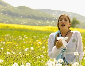 Чихание может говорить об аллергии на майские цветы, а может быть и на плесень или грибок. Фото: altrendo images/Getty Images
