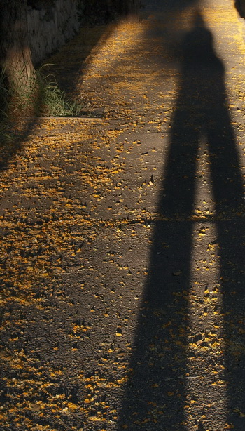 Смысл жизни, в чем он? Фото: Хава ТОР/Великая Эпоха