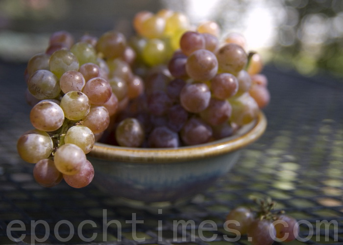 Учёные выявили новые целебные свойства винограда. Фото: EET/Великая Эпоха (The Epoch Times)