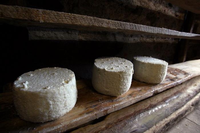 Сыр «Пуле» (с сербского переводится как «домашний осёл»), (1-е место). Стоимость 1000 евро/кг.