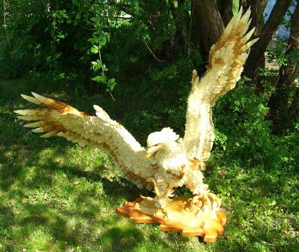 Орлан великолепный. Сибирский кедр, ива, талина. Фото с сайта Kozhany1.narod.ru.