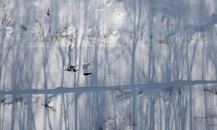 «Следуя тенью»: работа, претендующая на приз зрительских симпатий. Фото: Михаил Вершинин