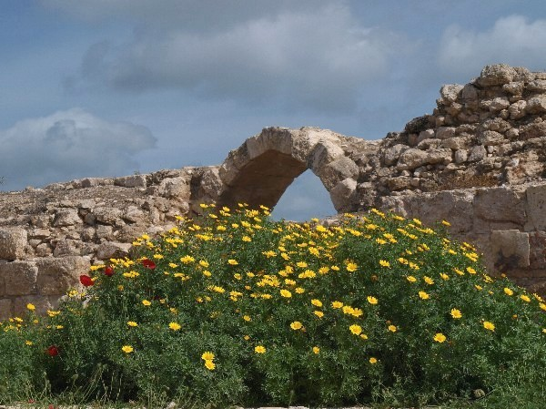 Путешествие по округам Бейт-Шемеша (Израиль). Фото: Хава ТОР /Великая Эпоха(The Epoch Times)