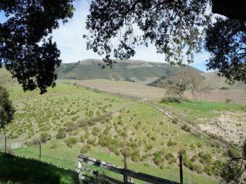 Вдохновляющий вид: красивый вид гор Санта-Лючия из коттеджа Бернардус. Фото: Beverly Mann