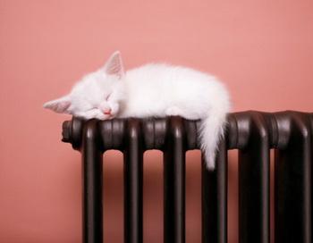Старый добрый чугунный радиатор. Фото: Anthony Bradshaw/Getty Images