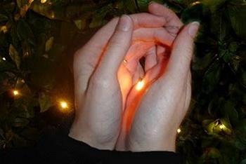 Светлячок - это дитя света, но светит только ночью.  Фото с сайта blogspot.com