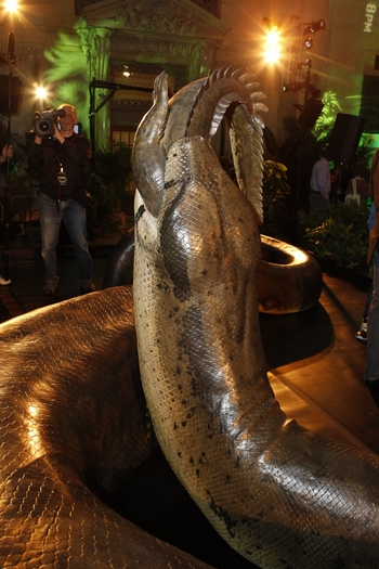 Titanoboa загладывает крокодила. Фото с сайта apxeo.info/novosti