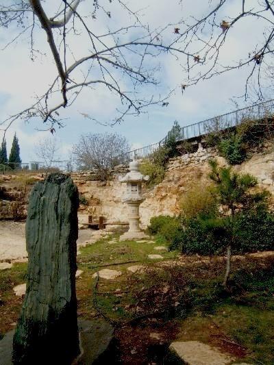 С Таней Шимель по ботаническому Иерусалиму. Фонарь и камень. Фото: Hava Tor. Великая Эпоха (The Epoch Times)