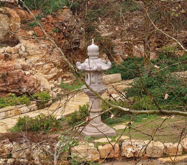 С Таней Шимель по ботаническому Иерусалиму. Японский уголок Фото: Hava Tor. Великая Эпоха (The Epoch Times)