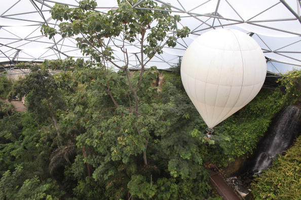 Eden - самая большая оранжерея в мире.  Фото: Matt Cardy/Getty Images