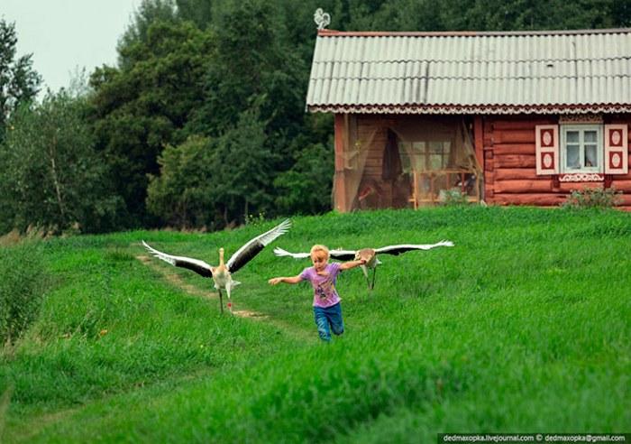Хинганский заповедник в Амурской области. Фоторепортаж. Фото: Фото:  fresher.ru