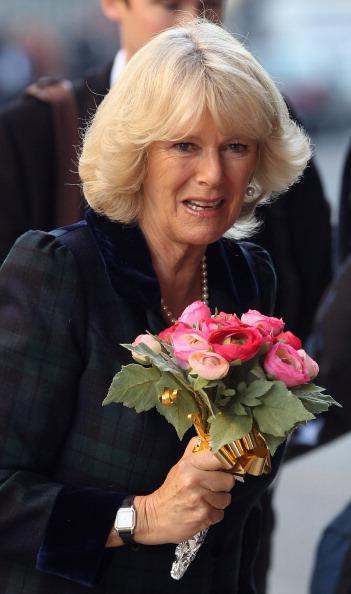 Камилла, герцогиня Корнуэльсская в  Клэренс Хаусе в ожидании жениха и невесты. Фото: Dan Kitwood/Getty Images
