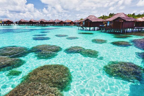 Мальдивы. Фото: Olga Khoroshunova/Photos.com