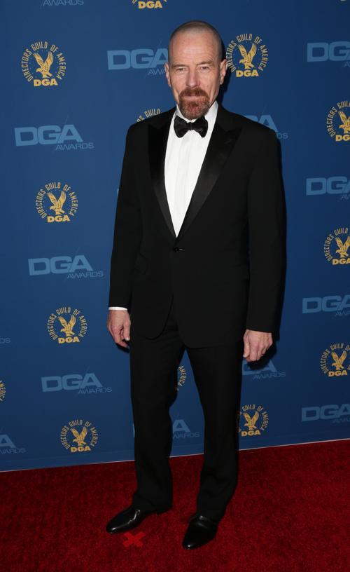 Брайан Крэнстон на вручении премии Гильдии режиссёров США 3 февраля 2013 года в Голливуде, США. Фото: Frederick M. Brown/Getty Images