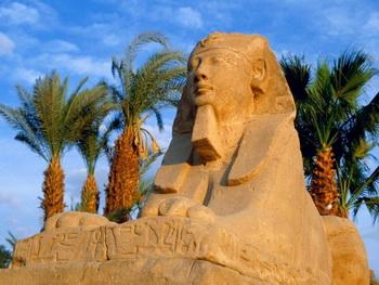 Безопасно ли отдыхать в Египте? Фото с ekarlad.ru