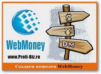 Ввод и вывод Webmoney в Воронеже - теперь это просто. Фото с gora-softa.ru