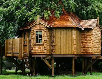 Фото с сайта amazontreehouses.com
