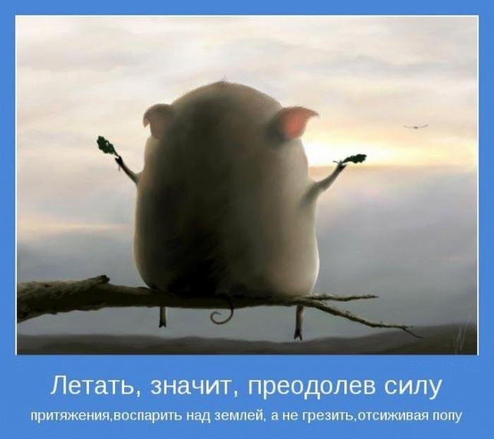 Мотиваторы выходного дня. Фото с сайта subscribe.ru