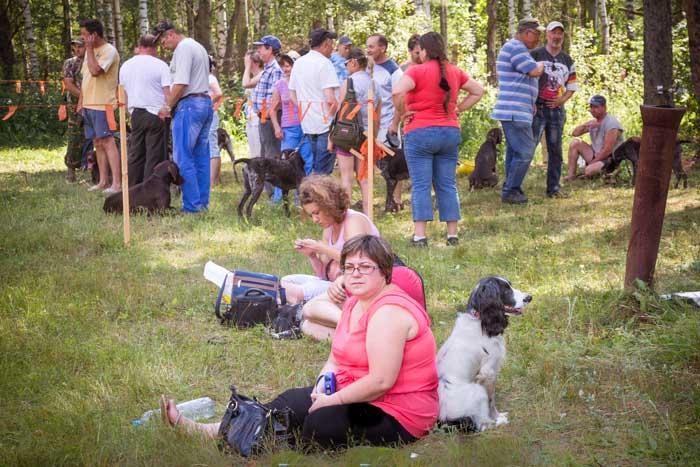 Выставка охотничьих собак прошла в Рязани. Фото: Сергей Лучезарный/Великая Эпоха (The Epoch Times)