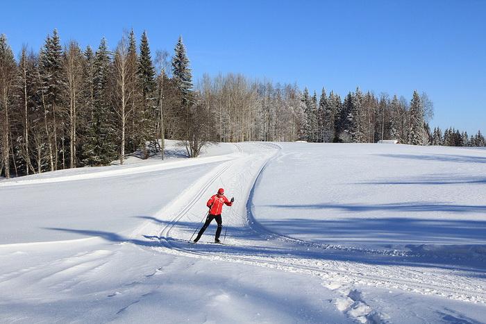 Многие финны катаются на лыжах, занимаются пешими прогулками, рыбачат, то есть много времени проводят на воздухе, что позитивно сказывается на их самочувствии. Фото: VisitLakeland/flickr.com